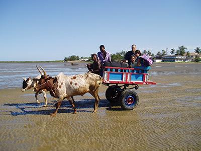 2005 Madagaskar 2. Ariary