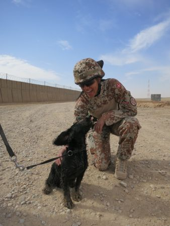 Og vi har også dyr, som i bombehunde ;-)
