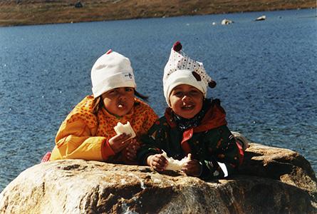 2000 Grønland