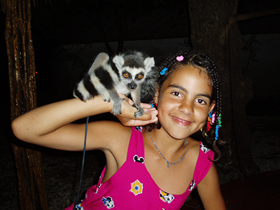 Ungerne ville bare tilbage til L'saxofon og deres kæle lemur Micki.