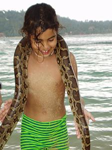 2004 Sri Lanka 2.